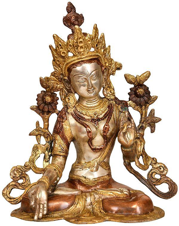 Goddess White Tara (Tibetan Buddhist Deity)