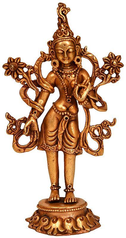 Tibetan Buddhist Goddess Standing Tara