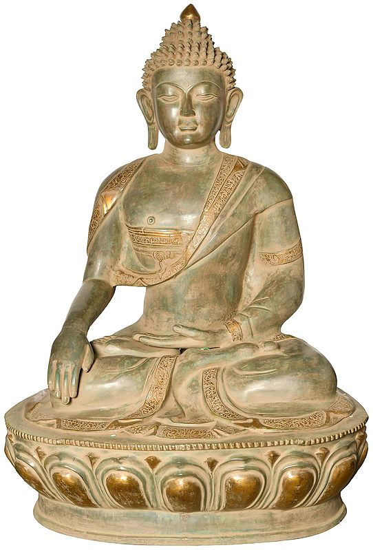 The Seedless Samadhi Of The Buddha