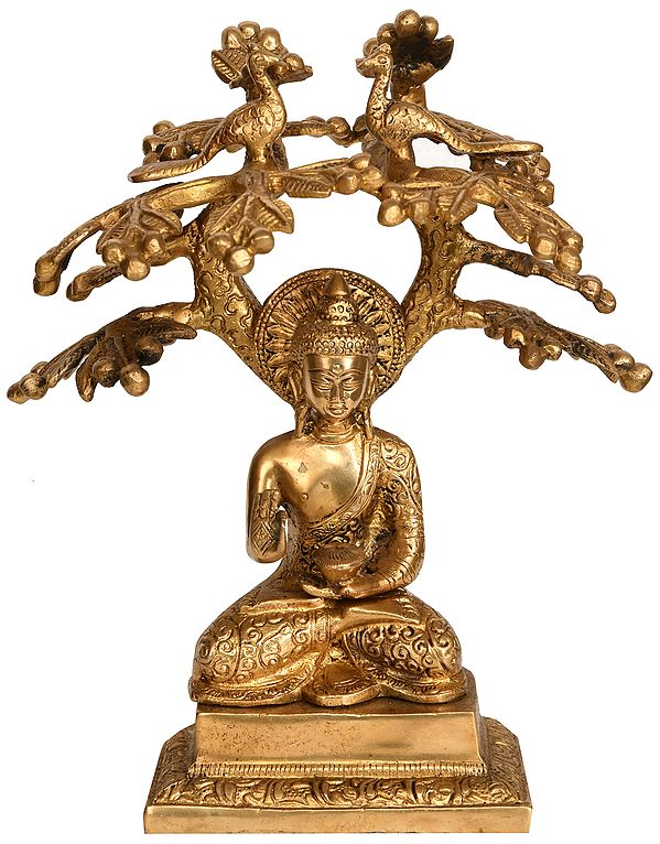 Tibetan Buddhist Deity Lord Buddha Under The Bodhi Tree