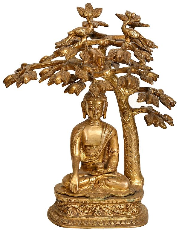 Lord Buddha Meditating Under the Bodhi Tree (Tibetan Buddhist Deity)