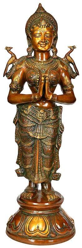 Namaste (Welcome) Lady