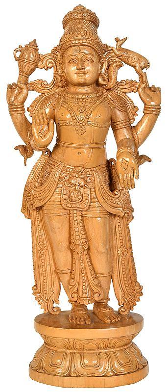 The Majesty Of Lord Pashupatinath