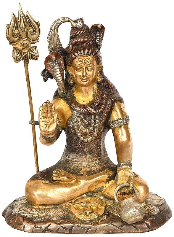 Shiva The Yogi with Kamandalu