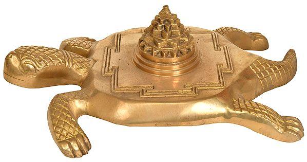 Shri Yantra on Tortoise For Vastu