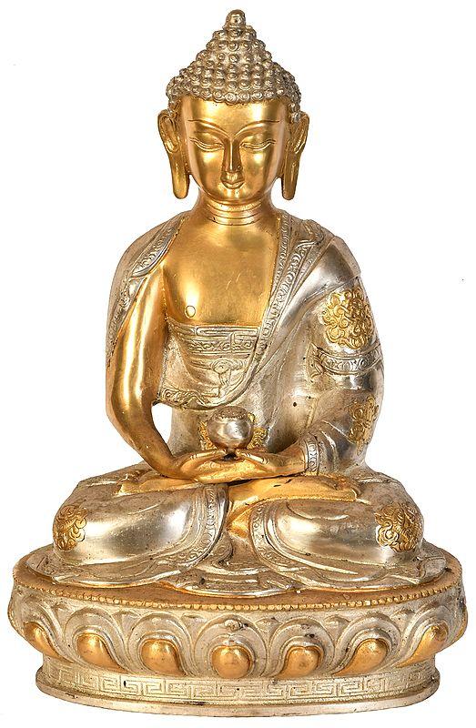 Tibetan Buddhist Lord Buddha In Dhyan Mudra (Meditation)