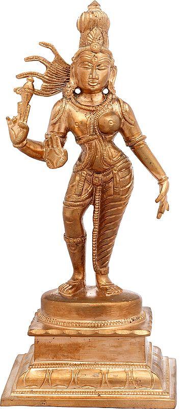 Ardhanarishvara's Flowing Tresses