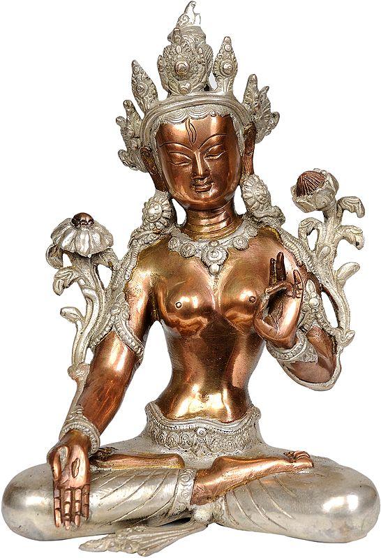 Tibetan Buddhist Goddess White Tara, Her Hands In Varada Mudra