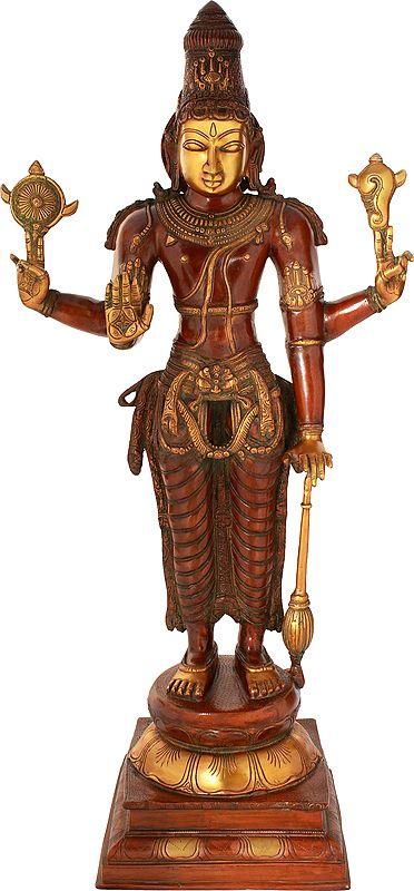 Vishnuji, His Stately Beauty