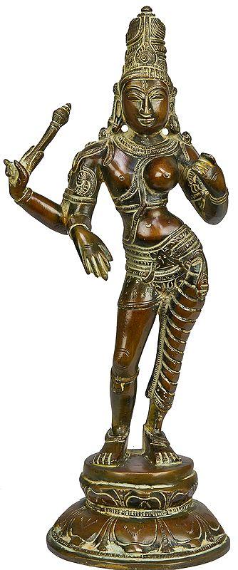 The Curvaceous Ardhanarishvara