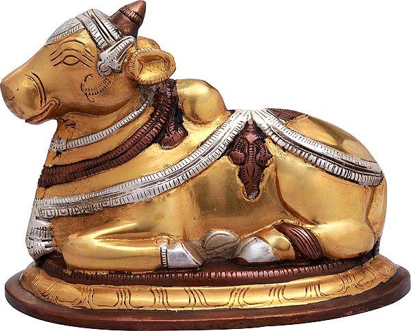 Nandi - The Mount of Shiva