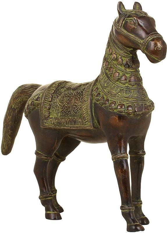 Stately Horse, Adorned Indian-style