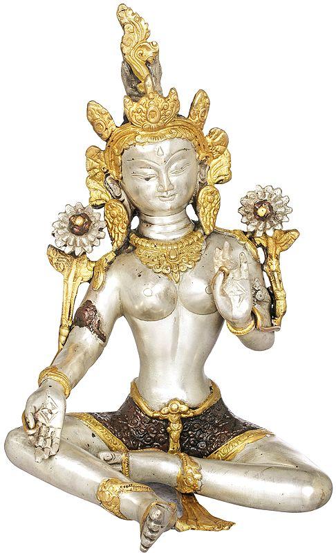 Steeped In Meditation, Green Tara's Soft, Silvery Beauty