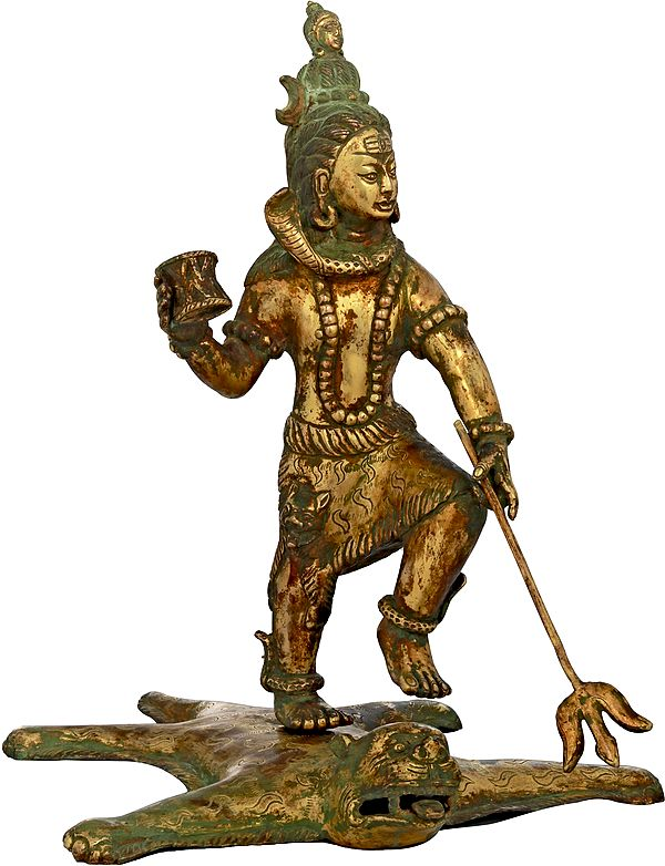 Tandava On The Tiger (Made In Nepal)