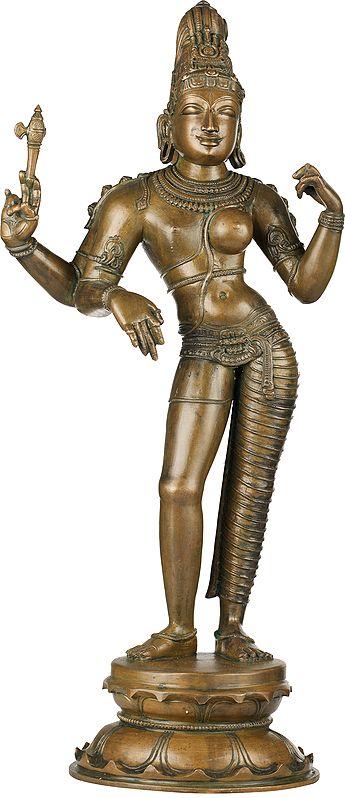 Ardhanarishvara, A Confluence