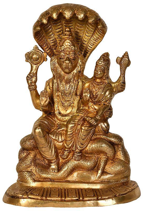 Lord Narasimha with Goddess Lakshmi Seated on Sheshanag