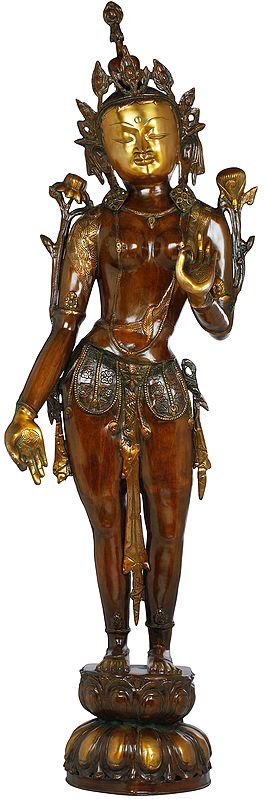 Standing Devi Tara, The Tall And Slender Yogini