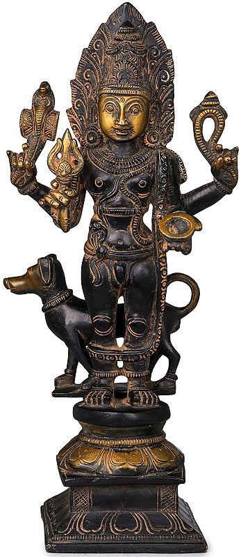 Lord Shiva as Bhairava