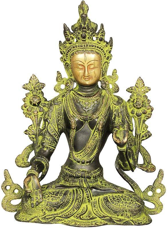 Goddess Green Tara -Tibetan Buddhist