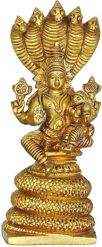 Vishnu With Goddess Lakshmi Seated On Sheshanaga