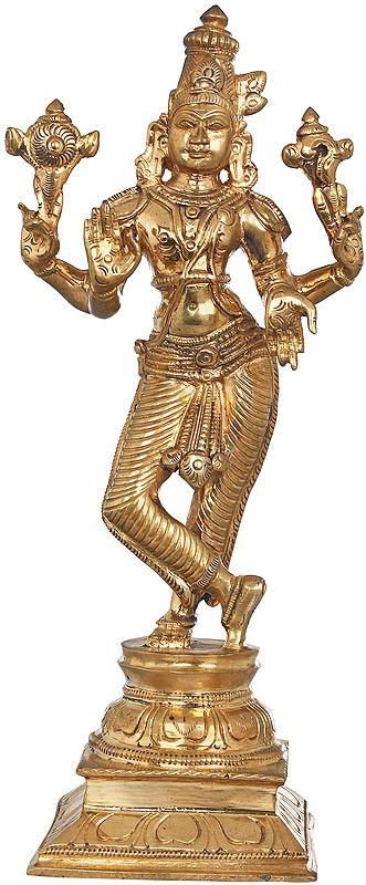 Lord Krishna as Vishnu