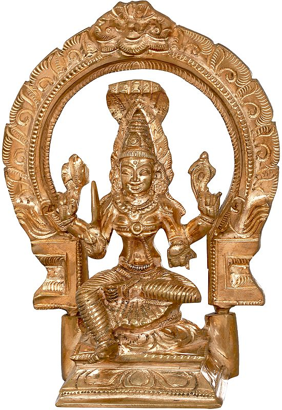 Compact Devi Mariamman With Aureole