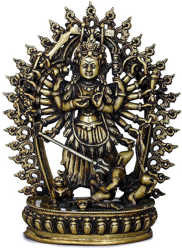Devi Mahishasuramardini Contained In a Ring Of Flames
