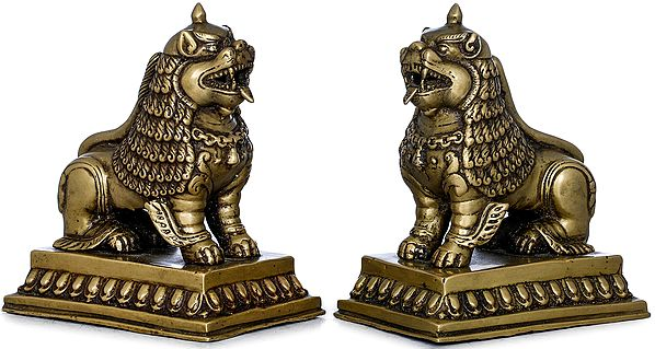 Pair of Temple Lions