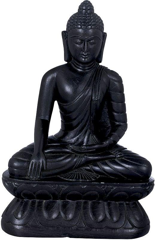 Tibetan Buddhist Lord Buddha Carved in Stone