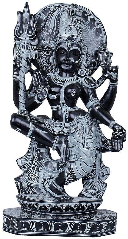 Nritya Ardhanarishvara