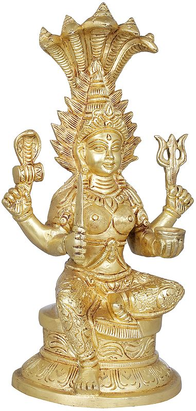 Mariamman - Goddess Durga of South India