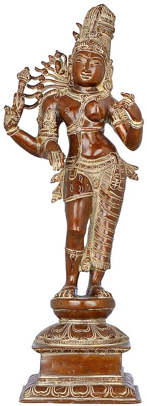The Beauty Of Ardhanarishvara