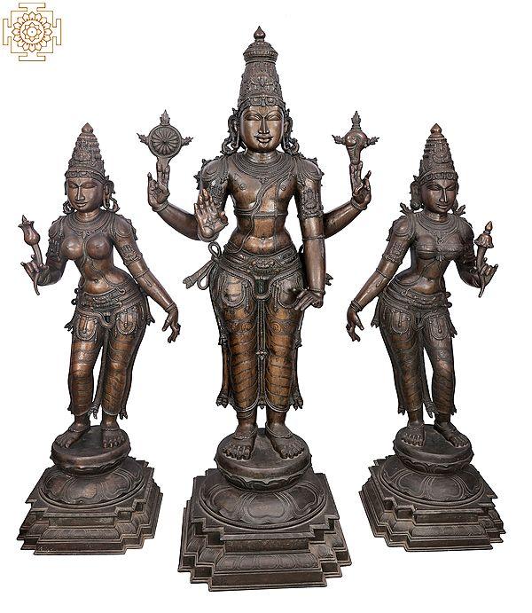 "65"" Superfine and Super Large Perumal with Sri Devi and Bhu Devi Bronze Set   Handmade   Madhuchista Vidhana (Lost-Wax)   Panchaloha Bronze from Swamimalai"