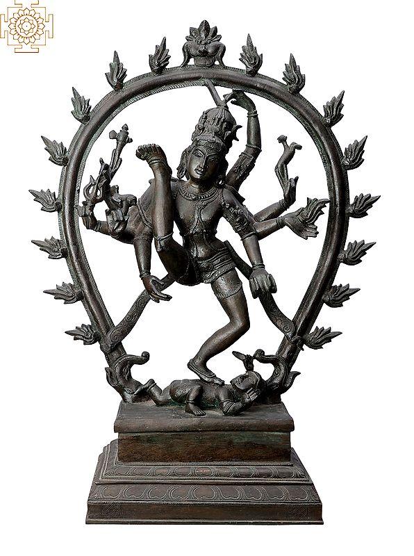 "20"" Nataraja  Handmade   Madhuchista Vidhana (Lost-Wax)   Panchaloha Bronze from Swamimalai"