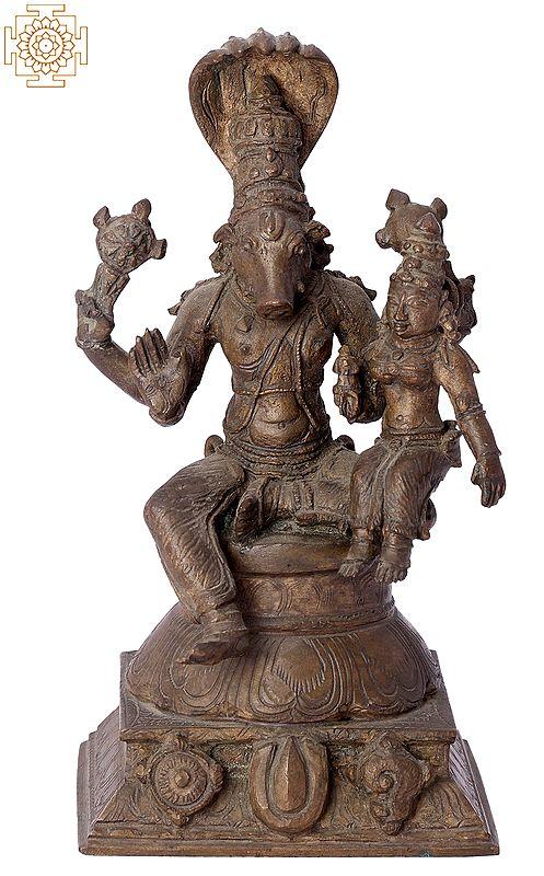 "6"" Bhagawan Varaha with Bhudevi   Handmade   Madhuchista Vidhana (Lost-Wax)   Panchaloha Bronze from Swamimalai"