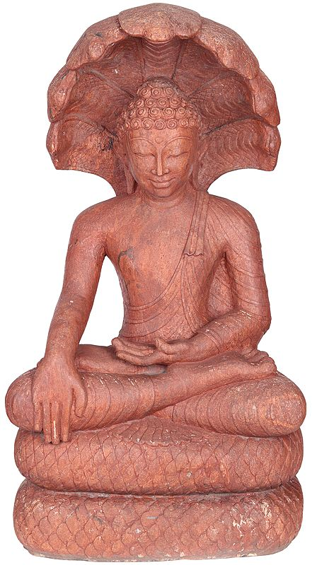 Large Size  Buddha Shielded by Muchalinda