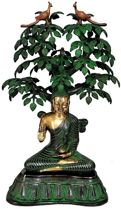 Large Size Buddha Under the Bodhi Tree