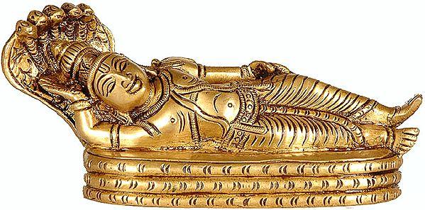 Lord Vishnu in Yoga Nidra