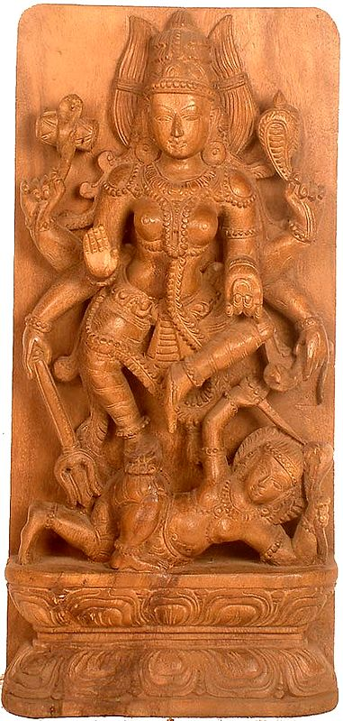 The Warrior Goddess Durga