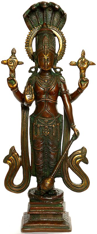 Lord Vishnu - The Axis of the World