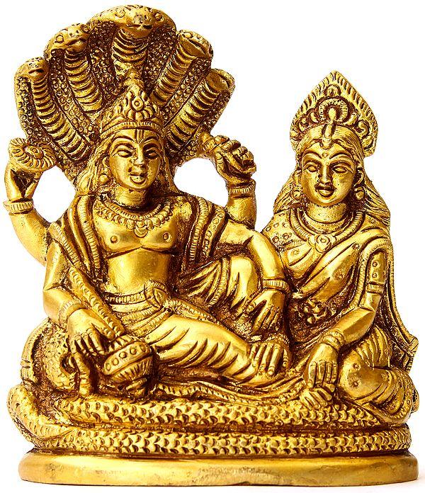 Lord Vishnu and Lakshmi Ji Seated on Sheshnag