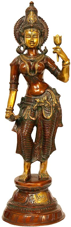 A Rare Form of Goddess Lakshmi with Normal Two Arms