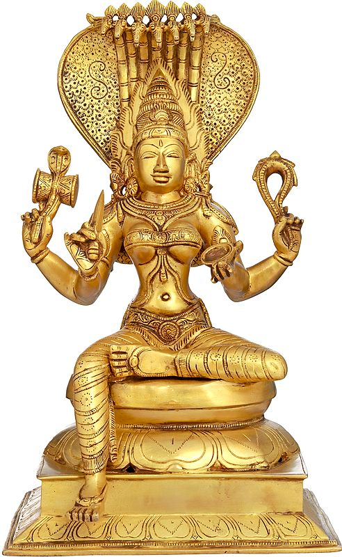 Awesome Goddess Mariamman