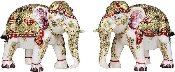 Decorated Royal Elephants Pair