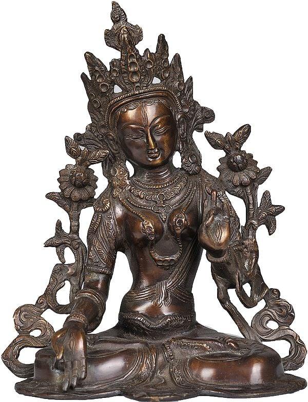 Tibetan Buddhist Goddess White Tara in Brown Hue