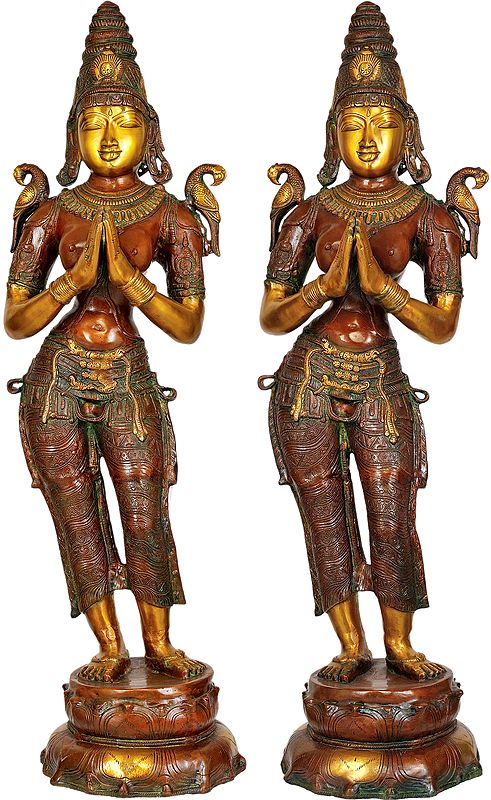 Large Size Dwara-Devi in Pair (Pair of Celestial Doorkeepers Flanking Temple Doors)