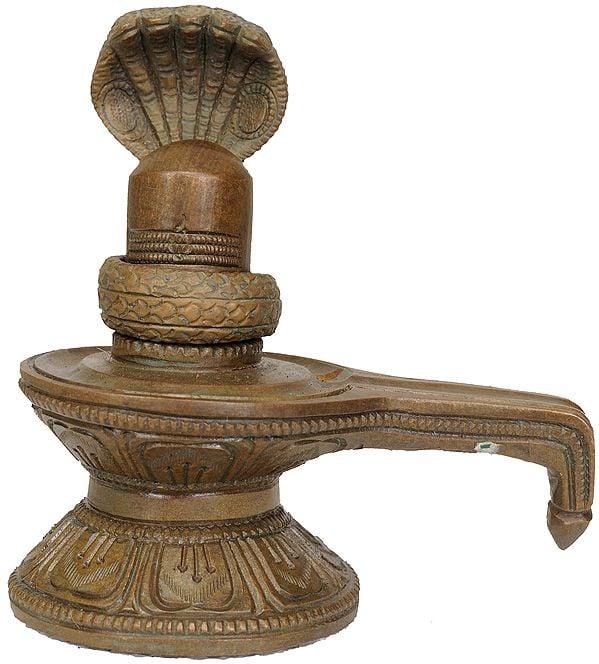 Shiva Linga with Shiva's Snakes Crowning It