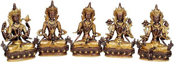 Tibetan Buddhist Deities Chenrezig, Amitabha, Vajrasattva, White Tara and Green Tara (Set of 5 Sculptures)