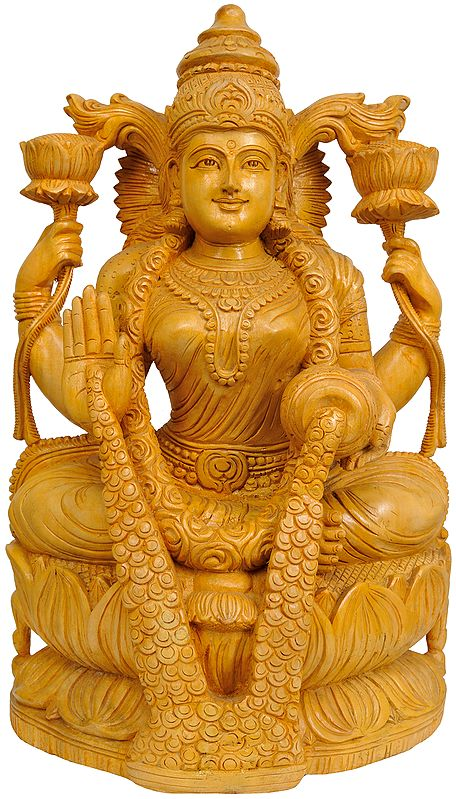 Goddess Lakshmi Raining Prosperity