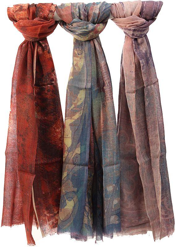 Lot of Three Digital-Printed Shawls
